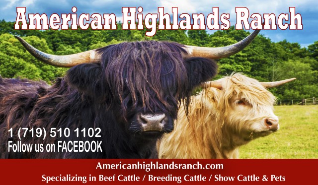 American Highlands Ranch